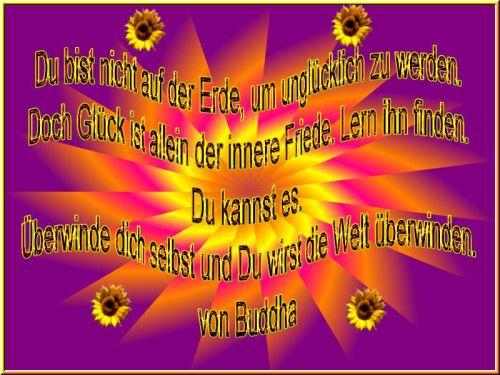 Spruch Des Tages Vom 22 Marz Sonstiges Plauderecke Forum