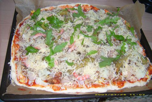 Fabulous Kann man Pizzateig mit Hefe und Backpulver zubereiten? | Pizza MS18