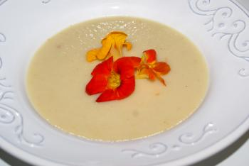 Selleriesuppe mit Chili