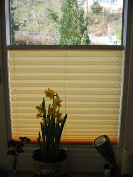 Welche Gardinen Für Eckfenster Haus Garten Forum Chefkochde
