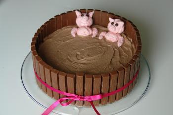 Schweine baden im Schlamm