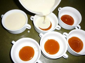 Brasilianischer Pudding (Pudim de leite condensato) I