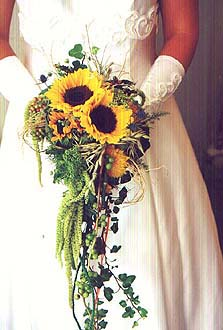 Floristik Fotoalbum Sonstiges Bei Chefkoch De
