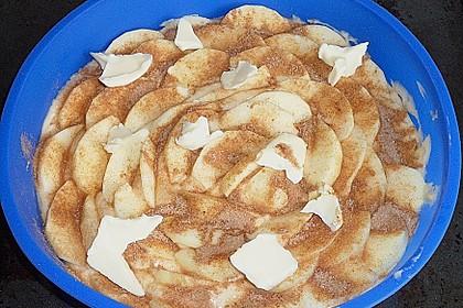 Amerikanischer Apfelkuchen 27