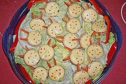 Lustige Käse-Käfer 59