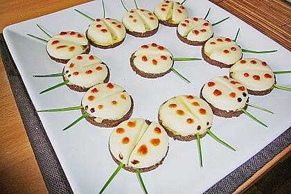 Lustige Käse-Käfer 34