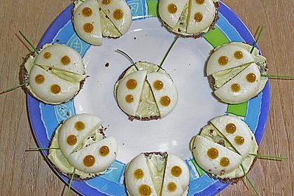 Lustige Käse-Käfer 80