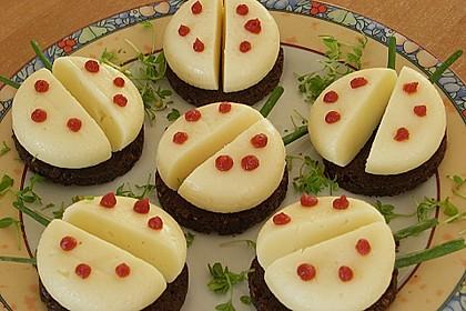 Lustige Käse-Käfer 45