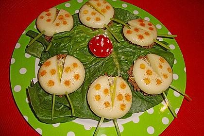 Lustige Käse-Käfer 39