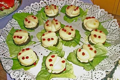 Lustige Käse-Käfer 65