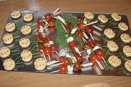 Lustige Käse-Käfer 30