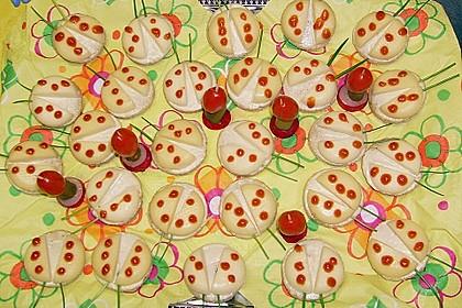 Lustige Käse-Käfer 26