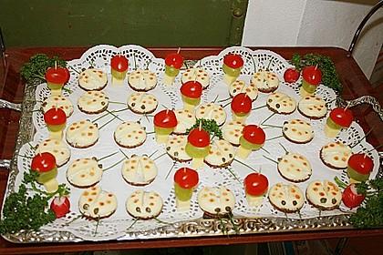 Lustige Käse-Käfer 77
