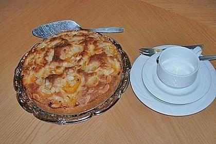 Aprikosenkuchen (Bild)