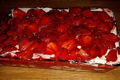 Erdbeer-Tiramisu 75