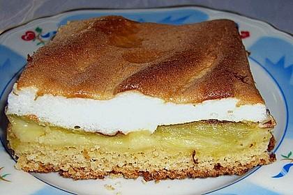 Rhabarberkuchen 16