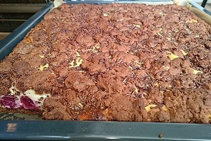 Michas Schoko-Streuselkuchen mit Quark-Kirschfüllung 18