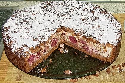 Michas Schoko-Streuselkuchen mit Quark-Kirschfüllung 62