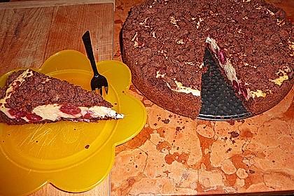 Michas Schoko-Streuselkuchen mit Quark-Kirschfüllung 67