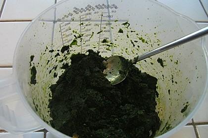 Bärlauch-Gewürzpaste 23