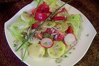 Kartoffel - Eisbergsalat 1