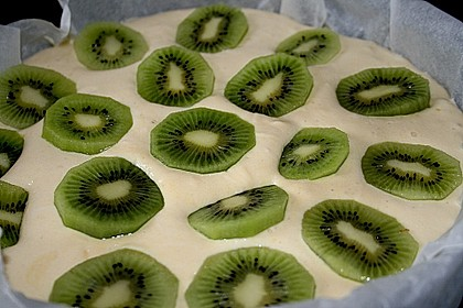 Käse - Obst Kuchen II, ohne Boden (Bild)