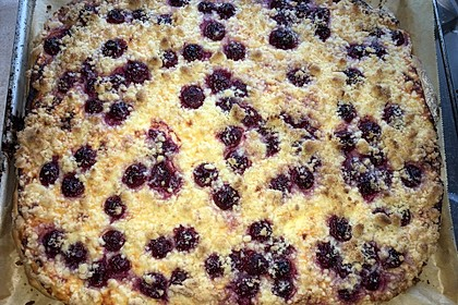 Hefekuchen vom Blech mit Pudding und Streuseln 14