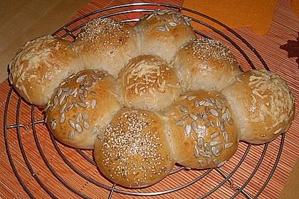 Bäckerschnecke 1