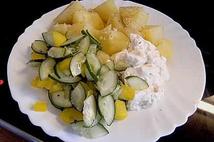 Dänischer Gurkensalat 104
