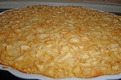 Schneller Apfelkuchen 53