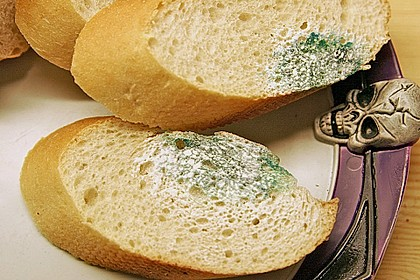 Schimmeliges Brot 4