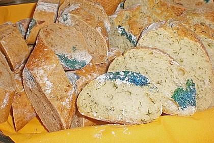 Schimmeliges Brot 1