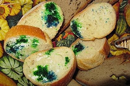 Schimmeliges Brot 15