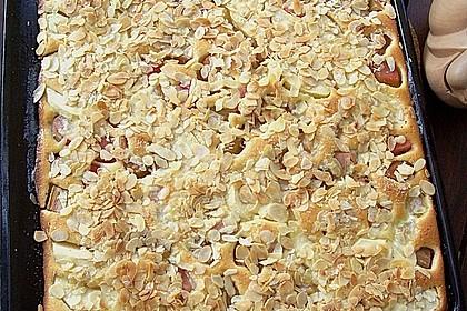 Rhabarber - Buttermilchkuchen 46