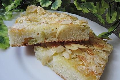 Rhabarber - Buttermilchkuchen 12