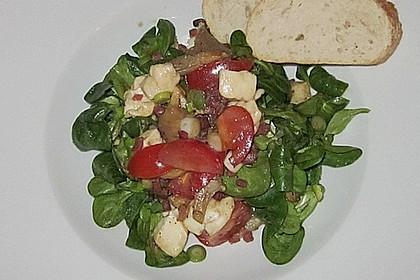 Lauwarmer Feldsalat mit Austernpilzen, Tomaten und Mozzarella 5