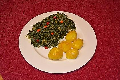 Grünkohl crunchy 8