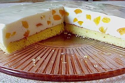 Pfirsich - Joghurt Torte mit Vanillehauch 10