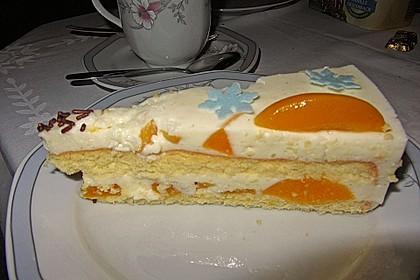 Pfirsich - Joghurt Torte mit Vanillehauch 26