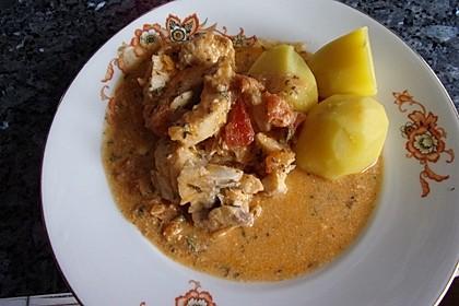 Fischfilet in Tomaten - Estragon - Sauce 15