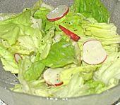Französische Salatsauce (Bild)