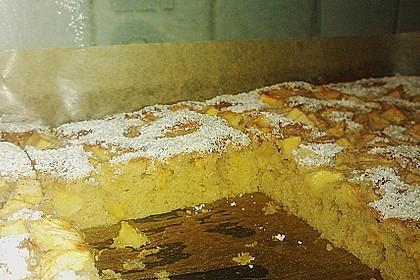 Apfelkuchen vom Blech 16