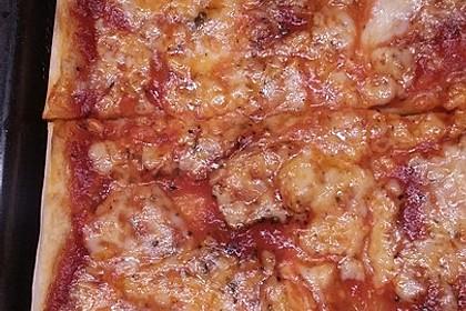 Pizza Margherita 47