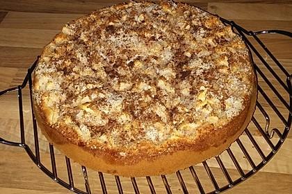 Apfelkuchen mit Quarkfüllung 7