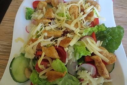 Bunter Salat mit Putenstreifen 15