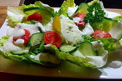 Joghurt - Honig - Senf Salatdressing 6