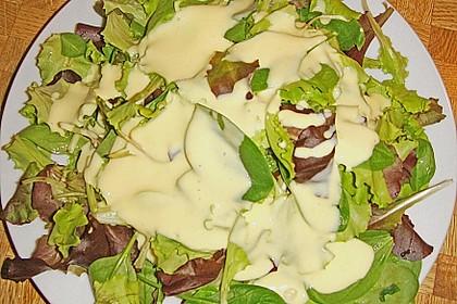 Joghurt - Honig - Senf Salatdressing 20
