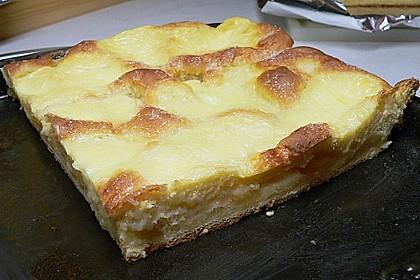 Apfel - Vanille - Kuchen 1