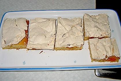 Marillenkuchen mit Vanillehäubchen 4
