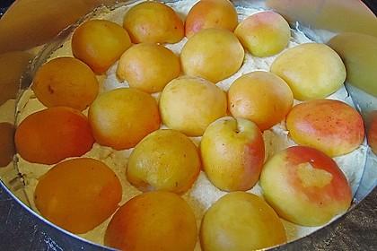 Marillenkuchen mit Vanillehäubchen 6